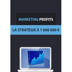 Marketing Profits